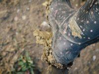 農作業靴のお手入れ方法を解説 ~洗い方、干し方、保管方法~