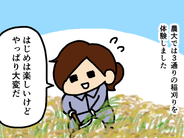 漫画「跡取りまごの百姓日記」【第33話】農大での稲刈り講習