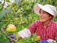 次世代の継承スタイル?! 非農家に嫁いでも家業を継ぐ農業女子