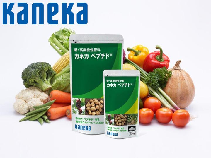 世界の食糧問題に貢献を 新高機能性肥料『カネカ ペプチド®』