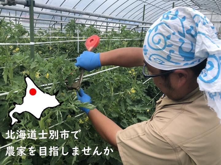 【北海道士別市】『地域おこし協力隊』となり、農家を目指しませんか?