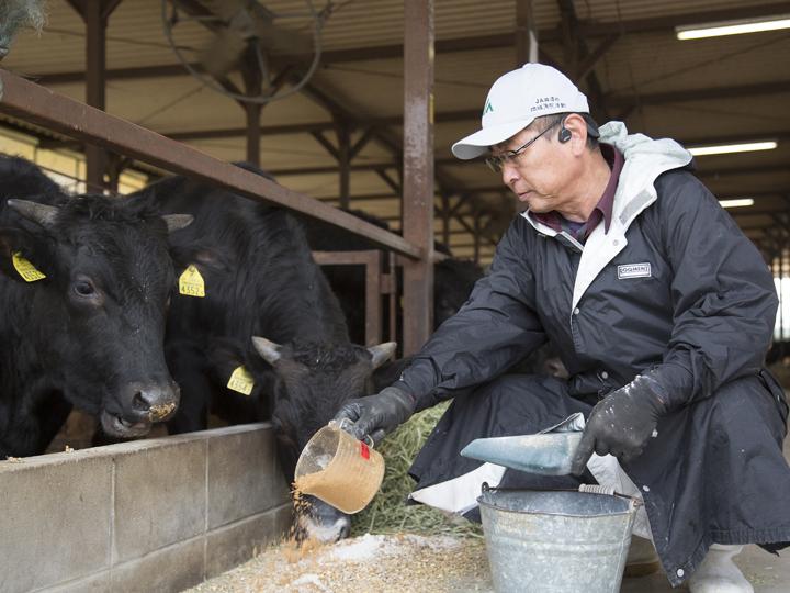 嗅いでみるとほんのり甘く香ばしい『アマニウム』。牛たちにも大好評