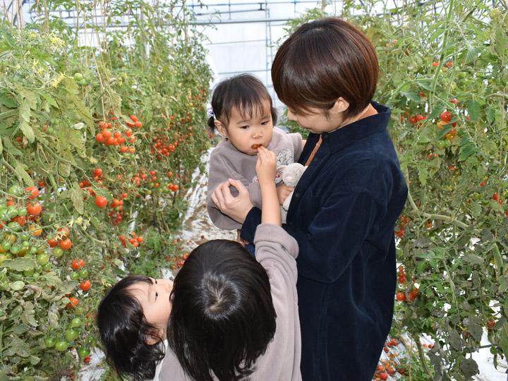 お子さんがトマトを食べてる姿を見つめる奥さん
