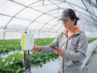『e-kakashi』を中軸とする科学的農業は、農業人材育成や農業者の増収をもたらし、地域活性化に貢献する