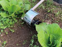 道具の使い分けで除草作業効率が向上 雑草管理に役立つ刈払機アタッチメント