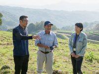 和牛繁殖農家をICTでサポート 『おおいた豊後牛』の生産量UPと広域利用価値の向上を目指す