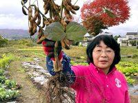 """""""奇跡のリンゴ""""に魅せられて 自然栽培で新境地を開く"""