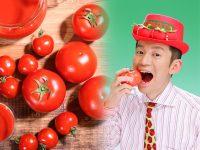 トマトの栄養と品種・保存法~おいしいトマトの見分け方~【野菜ガイド】