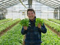 """北九州でしか食べられない""""幻の春菊""""とは? ~福岡県北九州市の農業の魅力に迫る旅"""