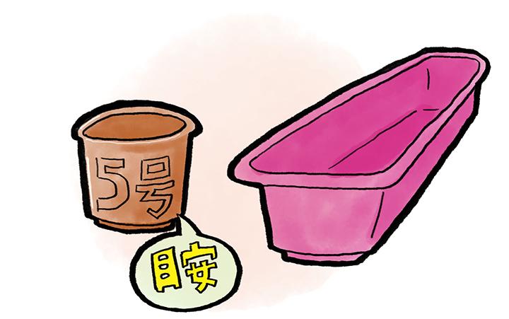 バジルのプランター・鉢の選び方
