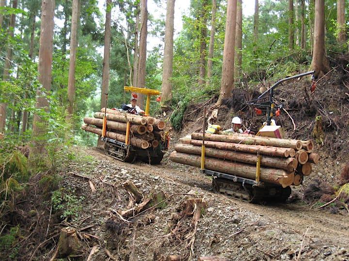 農家の兼業に最適?! 「自伐型林業」で稼ぐ可能性