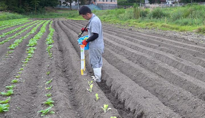 農Tuber 作業の様子