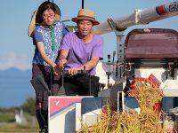 嫁ぎ先で代表に就任 念願の自然栽培を実現する農家の嫁