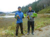 """日本有数の""""有機農業のまち"""" 熊本県山都町(やまとちょう)が農業研修制度を創設。さらに就農しやすい環境に!"""