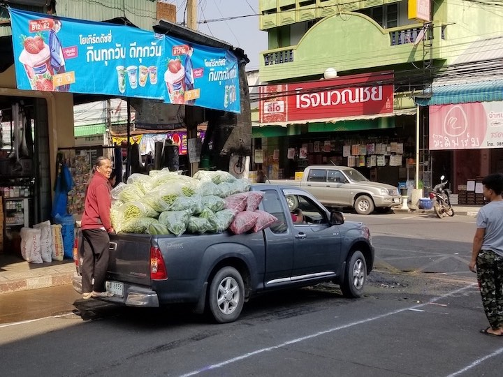【タイの農村滞在記】スパイスや熱帯果樹の栽培、斬新すぎる観光農園も!