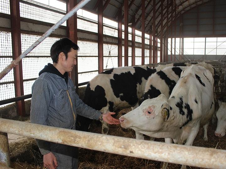 牛を大切にする心を第一に。酪農の楽しみを知るインターンシップ