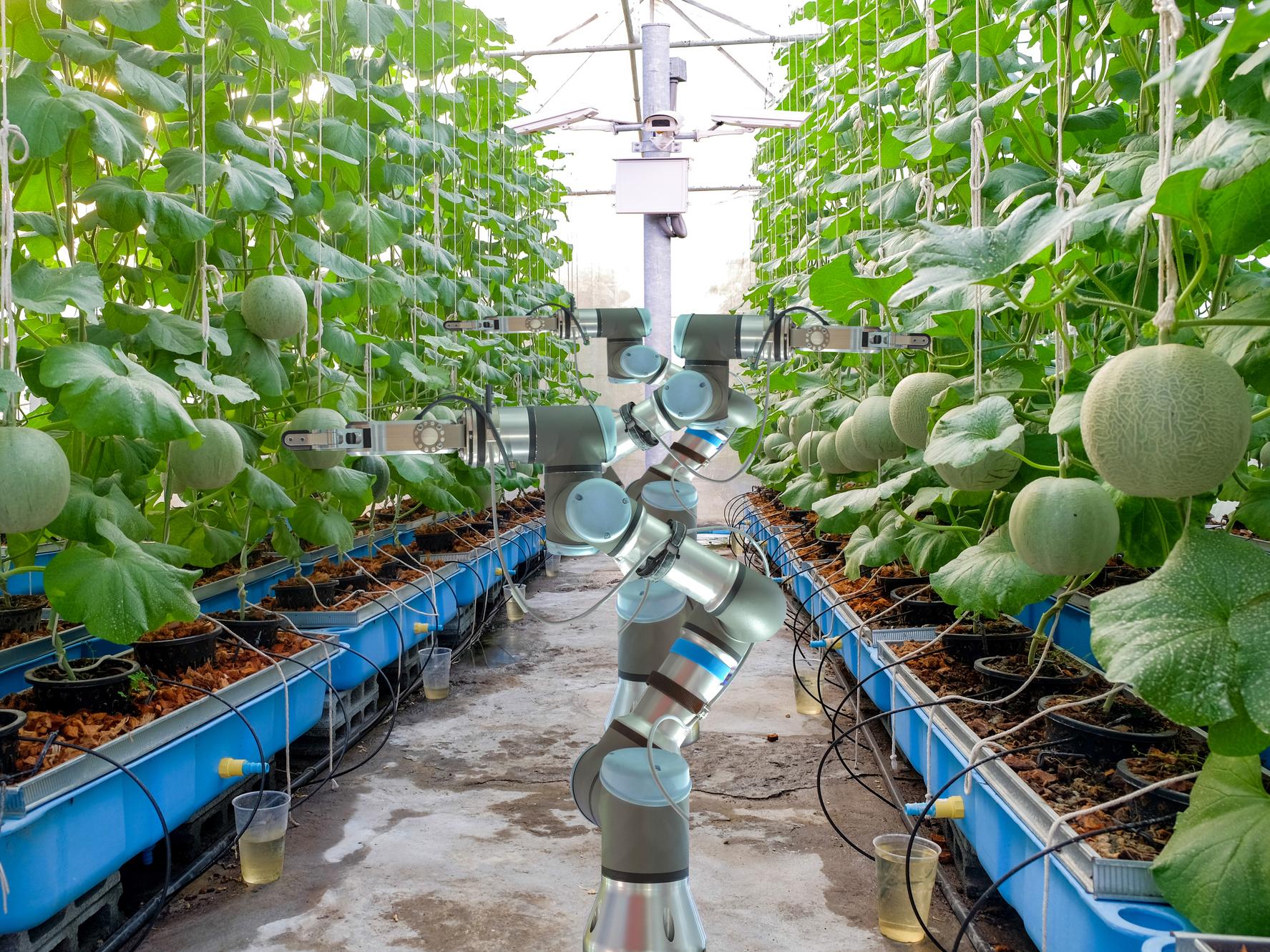 """""""出会う""""ことで生まれる農業の新たな可能性。『「スマート農業新サービス創出」プラットフォーム』が提供するマッチングの場とは"""