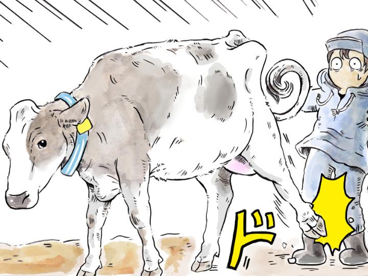 酪農漫画「うしだらけの日々」 第9話 新人従業員が気をつけること