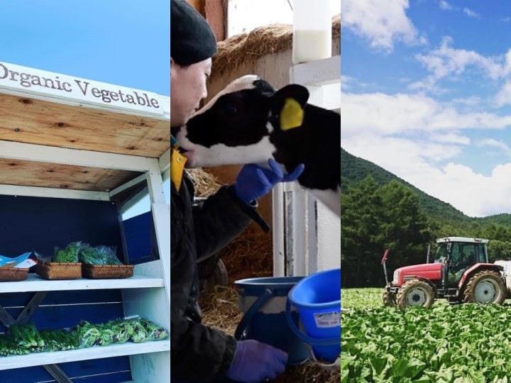 コロナ禍でも動き続ける農業 資材・人材不足で雇用急務【各地生産者の声】