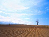 【北海道共和町】「農業」と「生涯学習」の分野で地域おこししませんか?