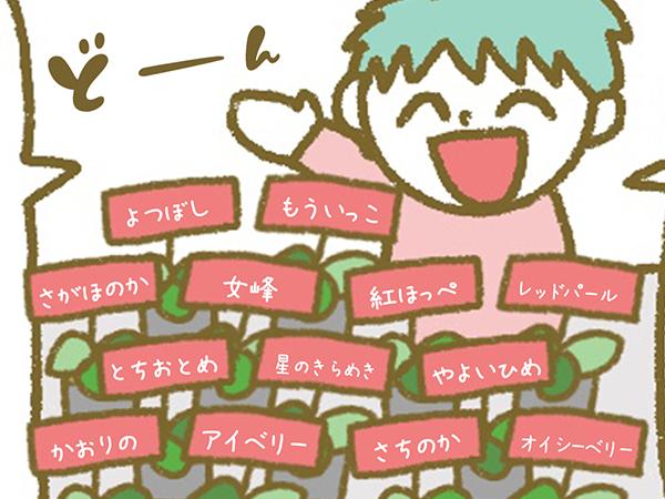 漫画「宮崎に移住した農家の嫁日記」【第113話】多品種の育苗