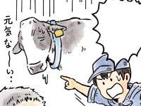 酪農漫画「うしだらけの日々」 第10話 牛を観ること