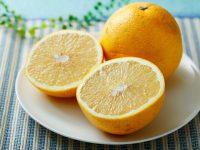 グレープフルーツの栄養や効果は? 種類やおいしい食べ方についてもご紹介
