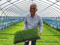 有機農法を続けて得た熟練の境地「稲に見られている」