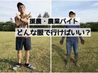 農業バイトに行くときに注意すべきことや服装のポイント
