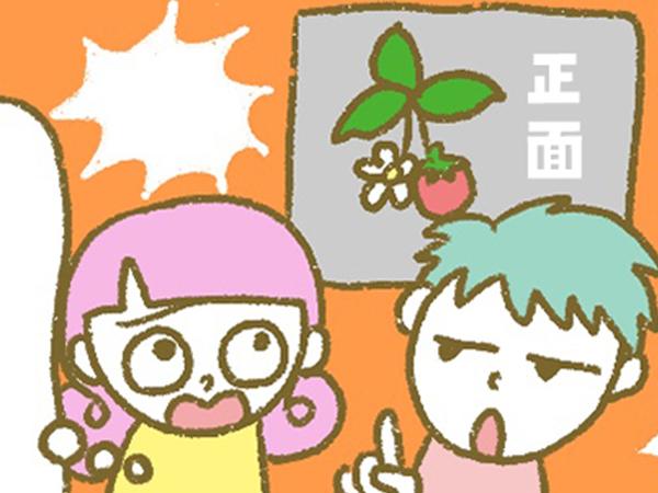 漫画「宮崎に移住した農家の嫁日記」【第118話】いちごの玉出し