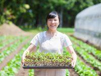 【解説】人手不足の農家に朗報! 援農者確保に助成金。働き手とつながる求人サイトも公開