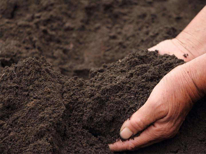馬ふん堆肥は他の堆肥と何が違う? 研究者に聞いてきました!