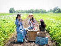 農業バイトを始めてみよう! 仕事内容や必要なスキルって?