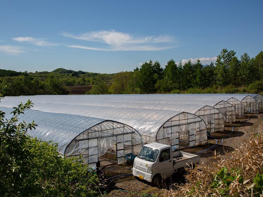 新規就農者でも農業収入で自立できる町。仕組みと人のかかわりに秘密あり