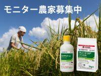 モニター農家さん募集中! 新発売の水稲用中後期除草剤を試してみませんか?