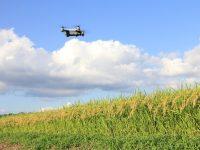 『「スマート農業新サービス創出」プラットフォーム』から生まれる新しい農業
