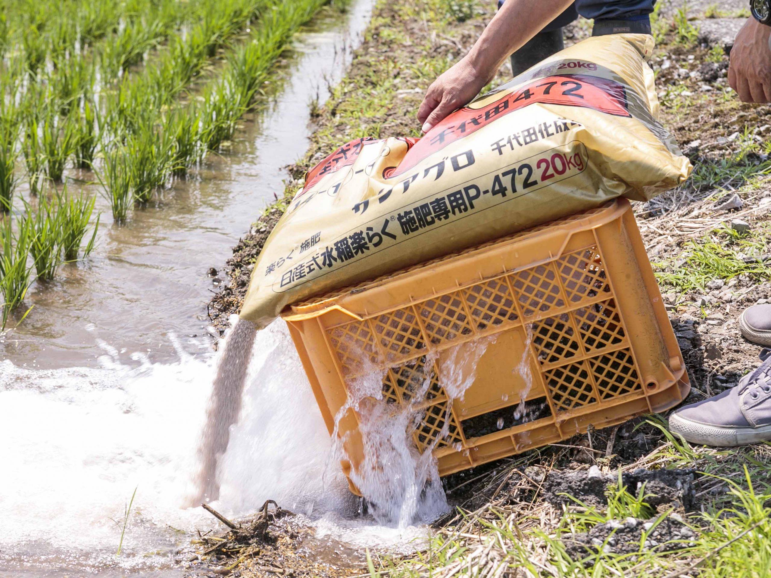 穂肥作業を省力化して収量UP! 水口から流し込むだけの『らくらく施肥法』とは?