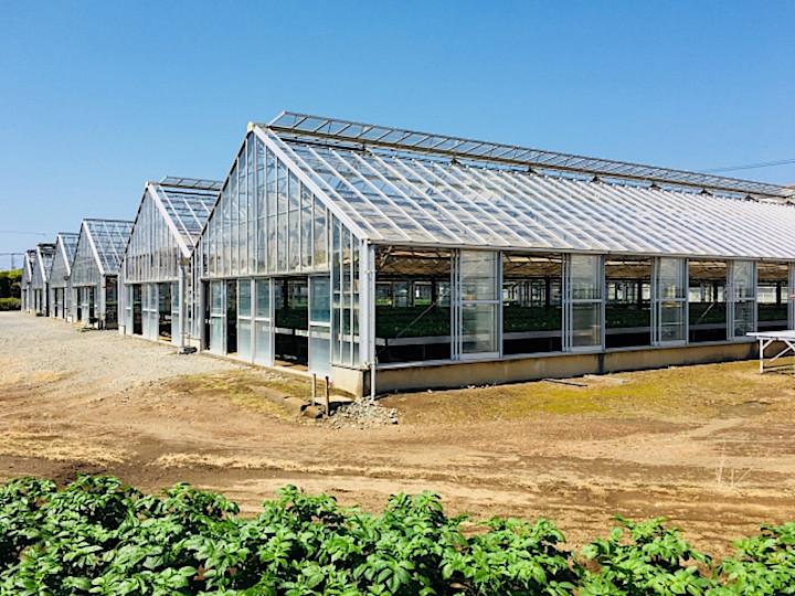 農業は成長産業! 農業ファンドの活用で可能性が広がる農業ビジネスの未来