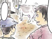 酪農漫画「うしだらけの日々」 第12話 搾乳室と牛