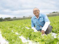 土づくりのカギはミネラルにあり。『こっこりん®』が土壌と作物を元気にする理由