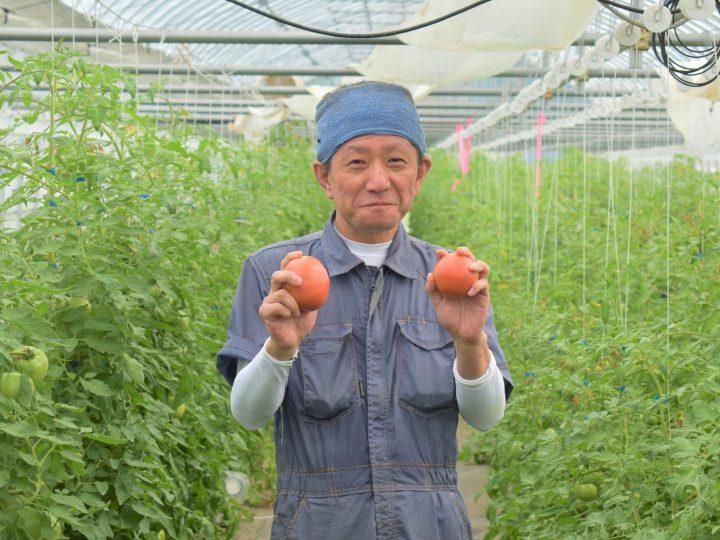 未経験から農家になるには。農業のプロを育てる研修施設の存在