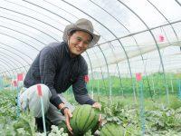 農業への夢を諦めないで!1000万円以上の就農サポートで理想の未来をカタチに