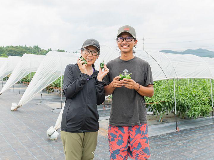 【動画付き】選べる研修&品目が人気!「日本一のおんせん県」大分で自分にぴったりの農業を始めよう