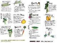 プロの視点で見る最初に育てる野菜おすすめ5選【ゼロからはじめる独立農家#10】