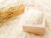 【就農の展望などを教えてください!】 ご回答者に抽選で『プレミアム大粒米 天のつぶ 2kg』をプレゼント!