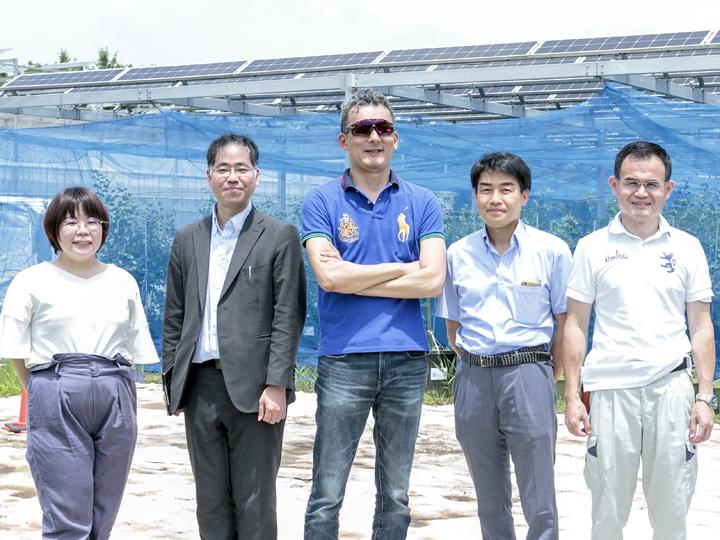 農水省も視察したソーラーシェアリング未来型農園とは?人気の背景に農業経営コンサルタントの存在