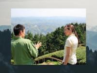 訪日観光客99.9%減 ツアー客受け入れの京都の茶苑、コロナ危機をどう乗り越える?