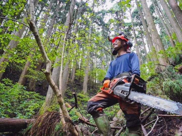 林業とは 仕事内容や就職の方法は? 若手林業者3人に聞きました!