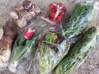 小規模兼業農家が考えるアフターコロナ 「届ける直売所」という選択肢
