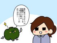 漫画「跡取りまごの百姓日記」【第71話】ヘタに注目! 完熟カボチャの見分け方